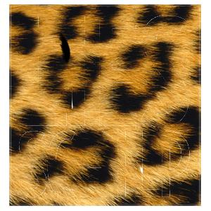 Lies Schilp